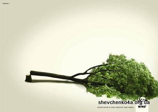 Защитим деревья вокруг!